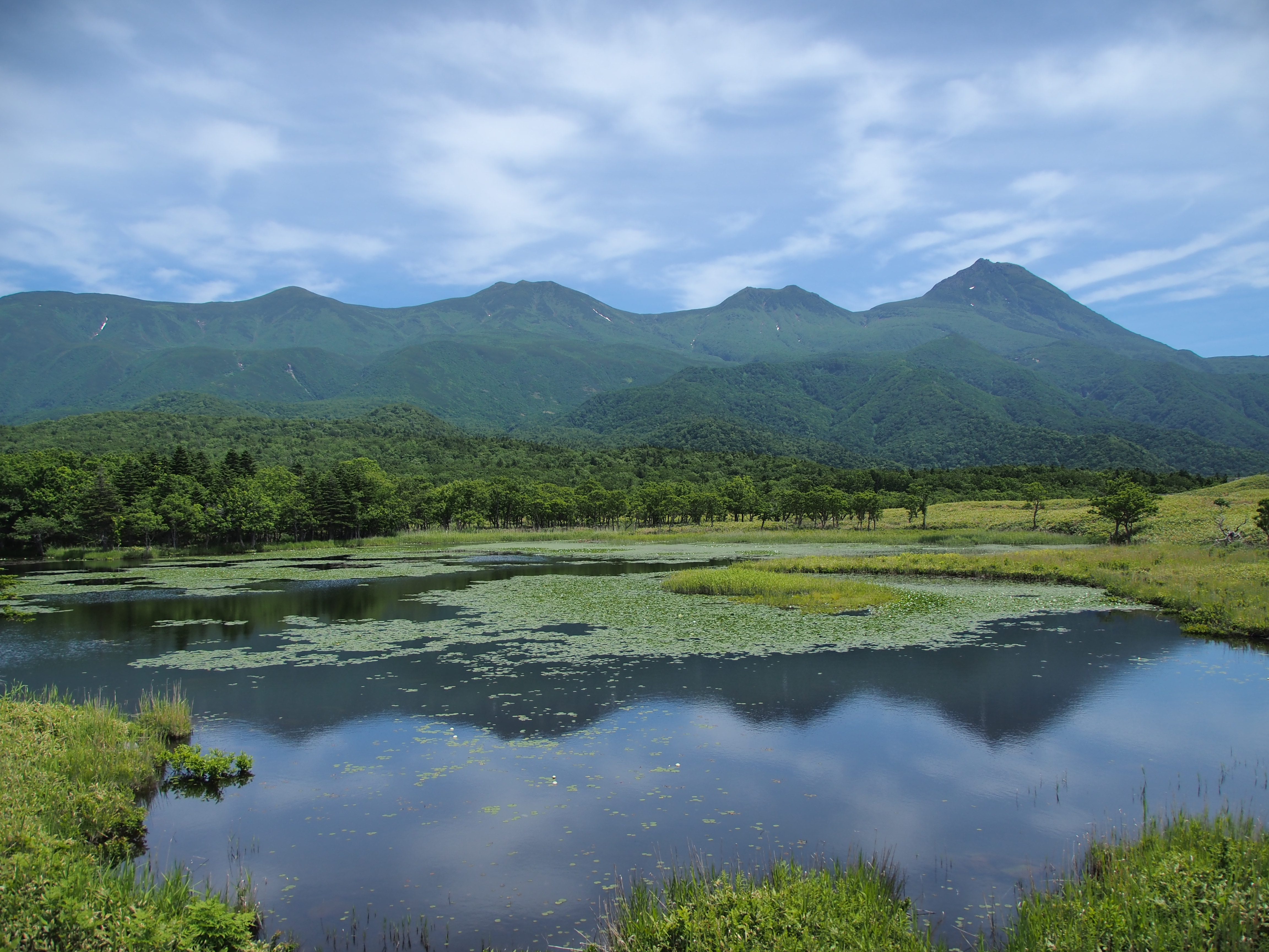知床五湖 高架木道の展望台から一湖