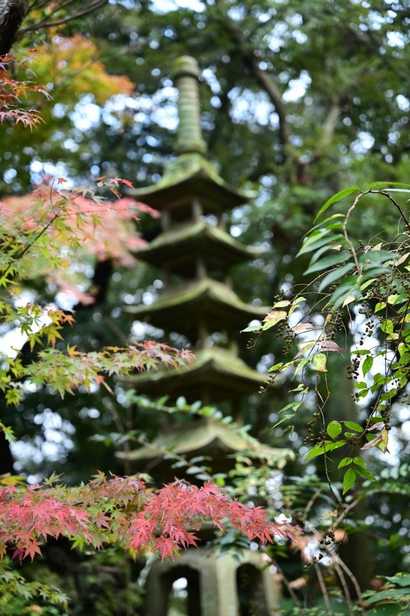 成田山公園2B
