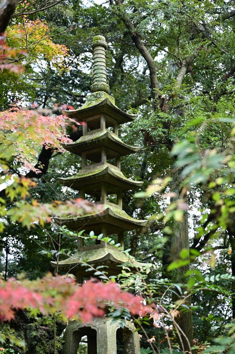 成田山公園2A