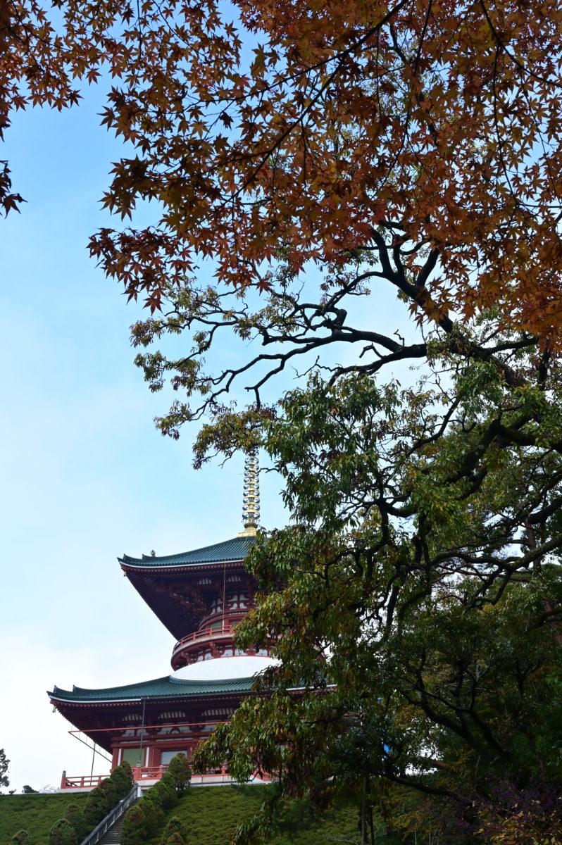 成田山公園5