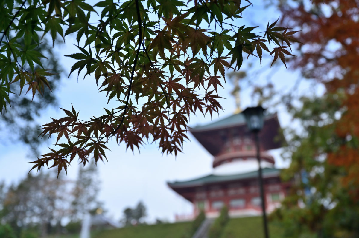 成田山公園4
