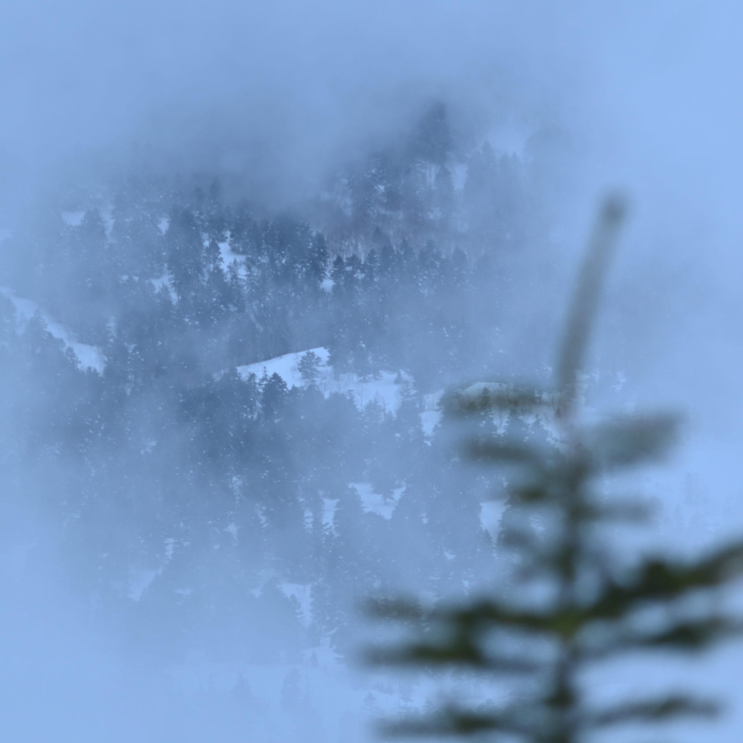 志賀高原写真教室 横手山山頂から 「雲に隠れて」