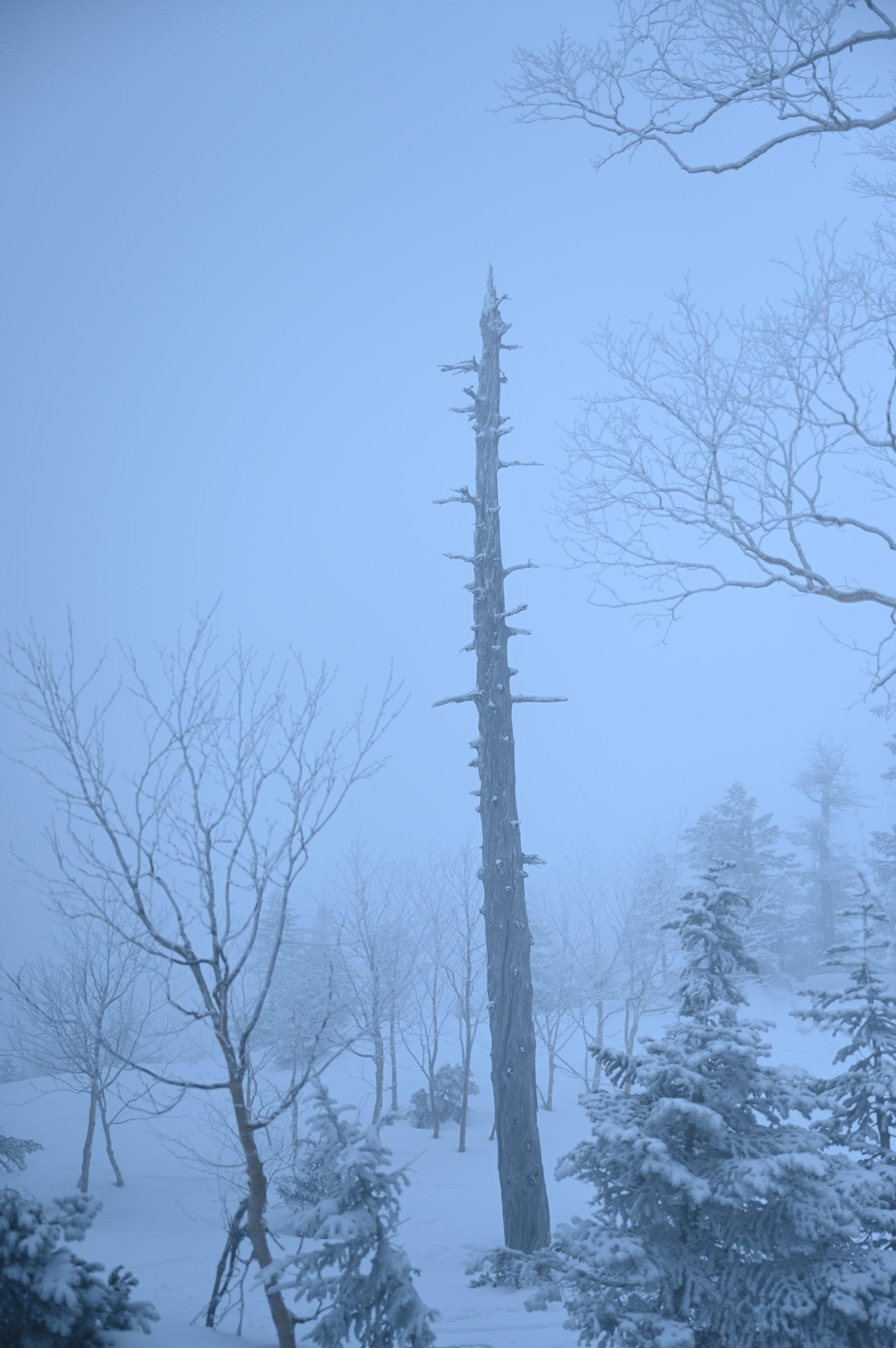 志賀高原写真教室 横手山のオベリスク